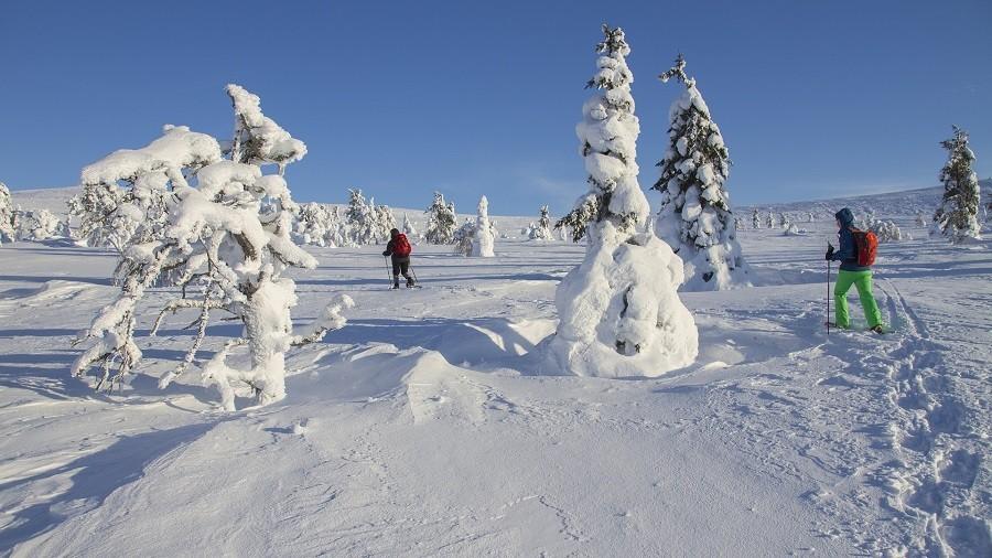 Travelnauts rondreis finland-lapland-sneeuw-winter-skien-sport Familiereis winters Lapland 30pluskids image gallery