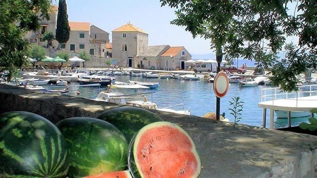 142_2.jpg Puur Kroatië 30pluskids image gallery