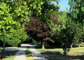 Domaine La Grangette in Villasavary, Frankrijk tuin Domaine La Grangette 30pluskids
