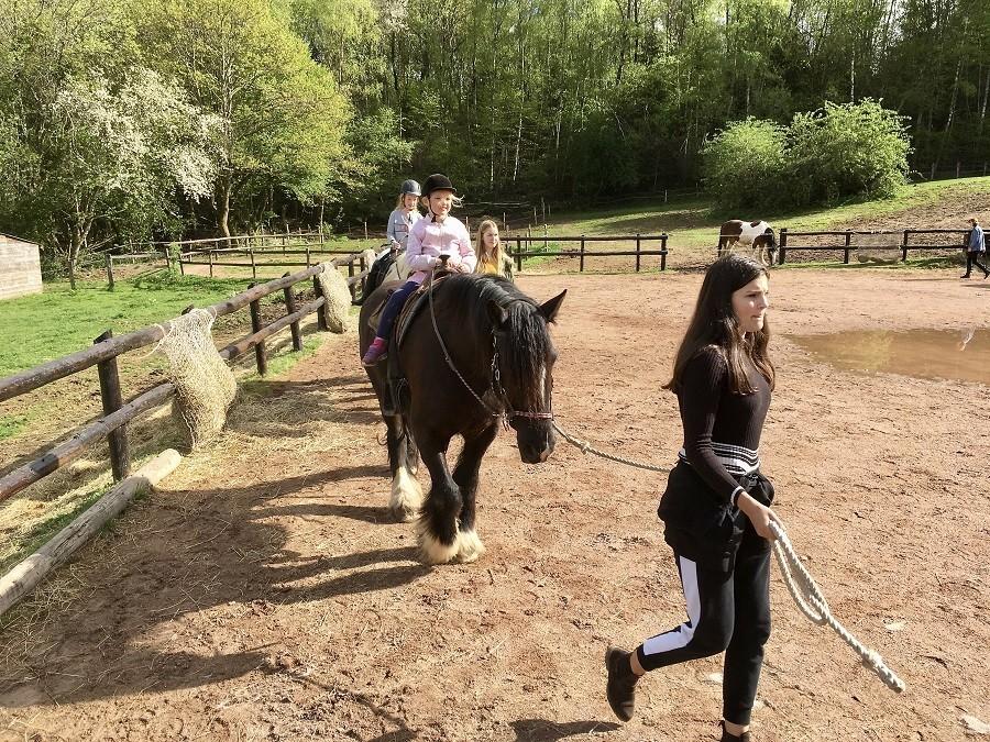 Morvan Rustique in de Bourgogne, Frankrijk pony rijden