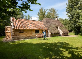 d'Olde Kamp in Drenthe, Nederland plaggenhut met geit d'Olde Kamp recreatie 30pluskids