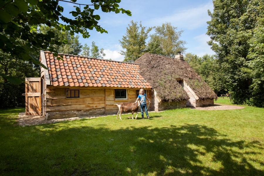 d'Olde Kamp in Drenthe, Nederland plaggenhut met geit d'Olde Kamp recreatie 30pluskids image gallery