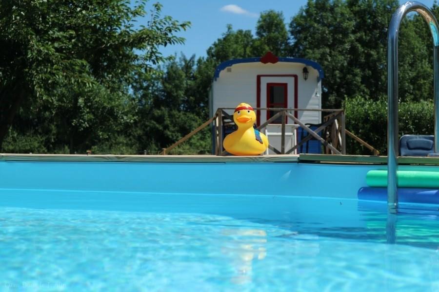 Dans le Jardin in de Bourgogne, Frankrijk zwembad Dans Le Jardin 30pluskids image gallery