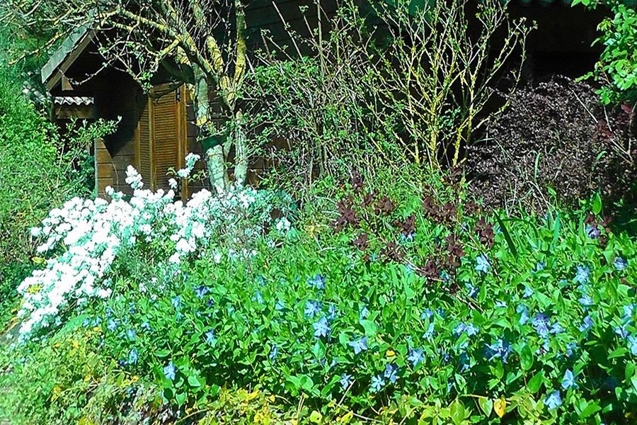 Les Aulnettes tuin.jpg Les Aulnettes 30pluskids image gallery