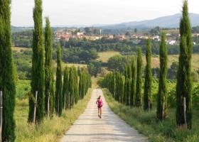 Partingoli B&B omgeving.jpg Partingoli - kindvriendelijk  vakantie vieren in Toscane 30pluskids